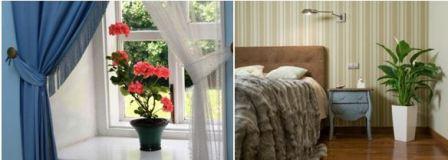 Уютный дом: спальня