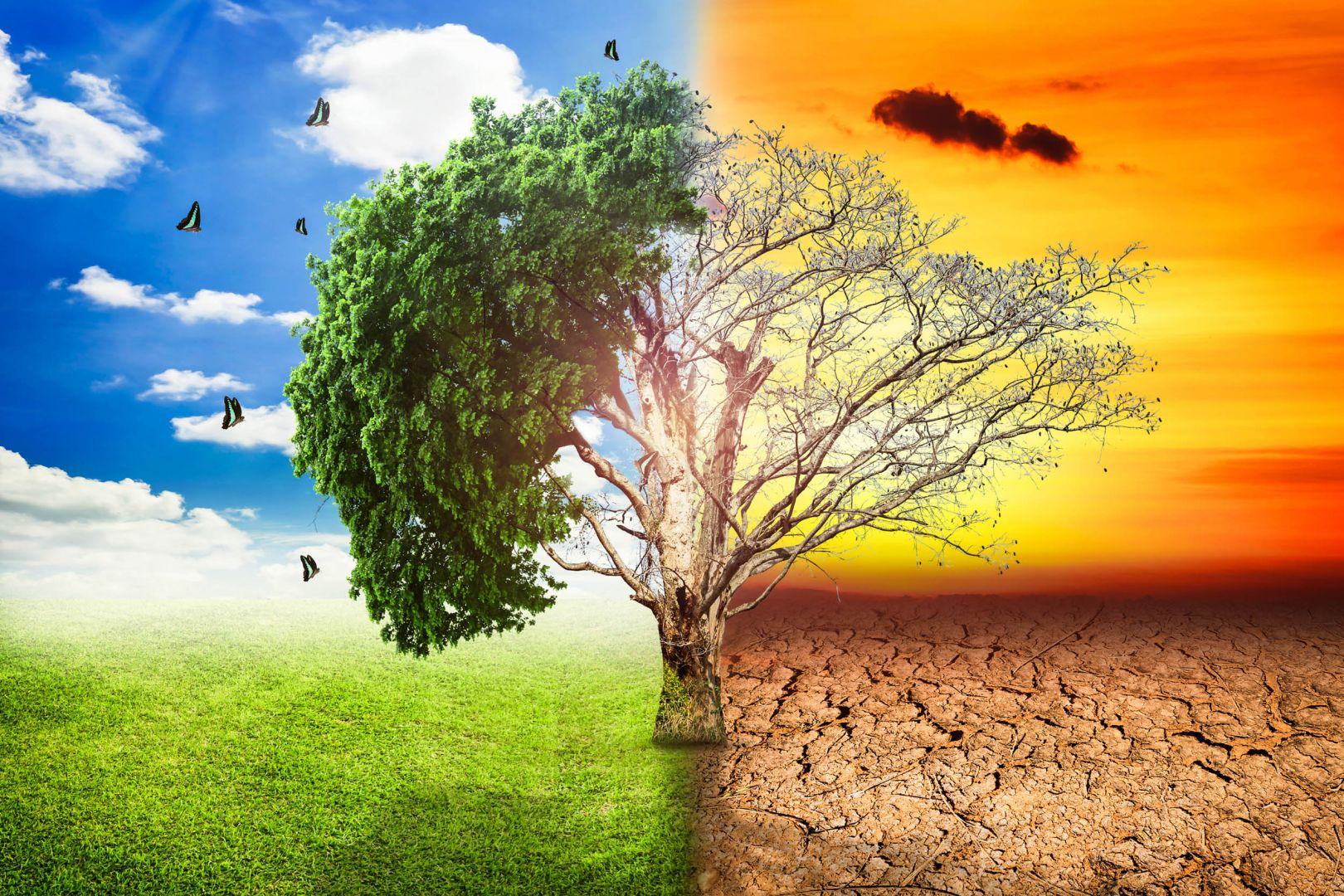 мероприятия по снижению выбросов при нму