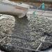 Выбор бетона для фундамента